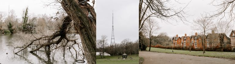 A day in Crystal Palace
