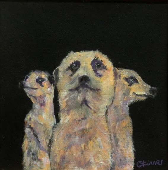 meercat trio, meercat painting, meercat art