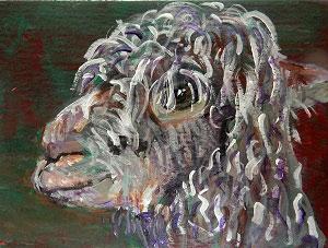 aceo alpaca art, curly, alpaca print, llama gift