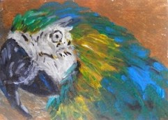 parrot painting, pretty polly