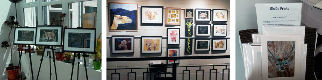 animal art exhibition, art displays