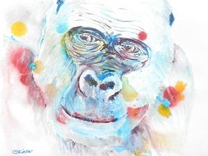 western lowland goriila art, gorilla gift, wildlife art