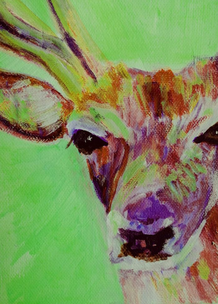 green and red stag painting, box canvas British wildlie art
