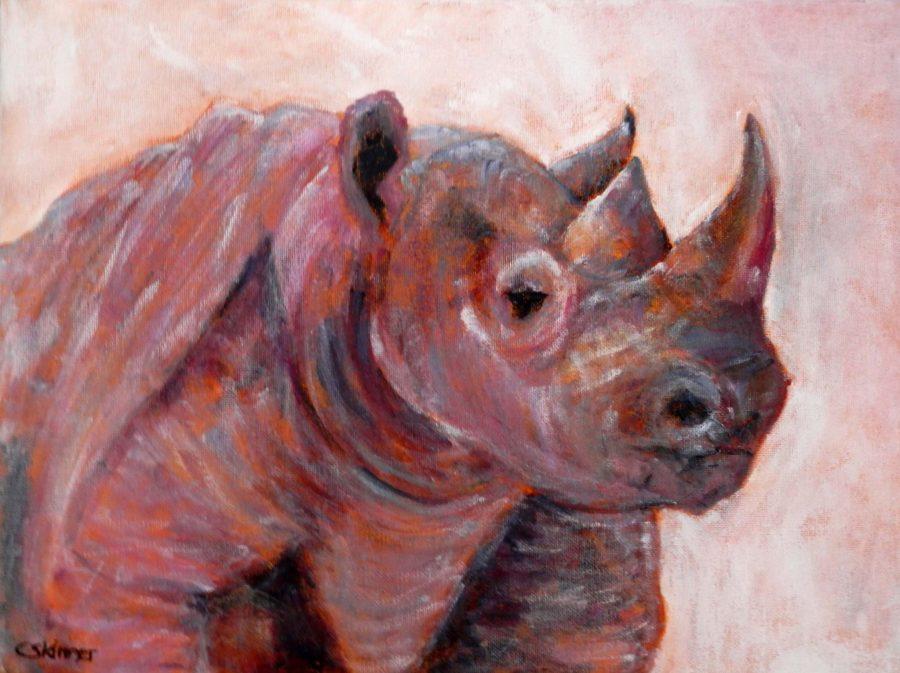 rhnio art, pink rhino painting orange wildlife art, wildlife box canvas, rhino gift