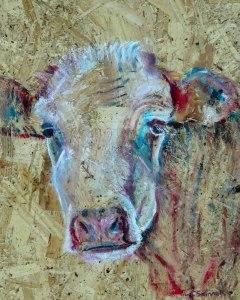 country cow art, textured farm animal art, colourful cattle wall decor