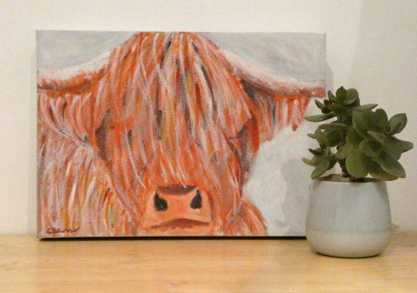 Cute highland cow acrylic painting by Caroline Skinner Art