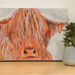 Cute highland cow acrylic painting by Caroline Skinner Art
