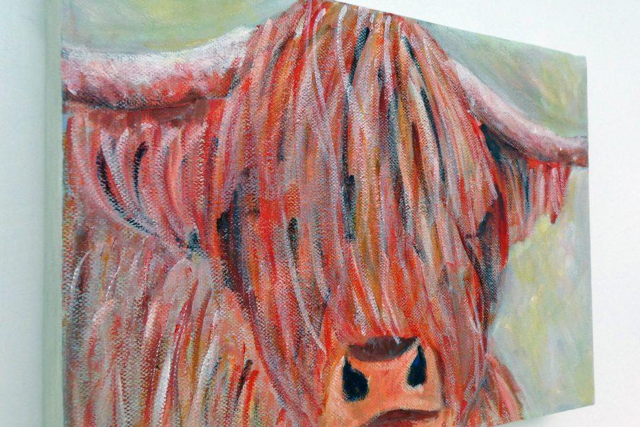 Highland cow box canvas on wall