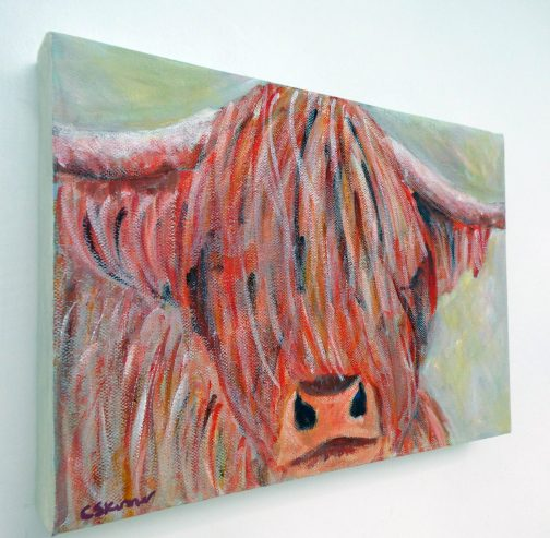 Highland cow box canvas on wall