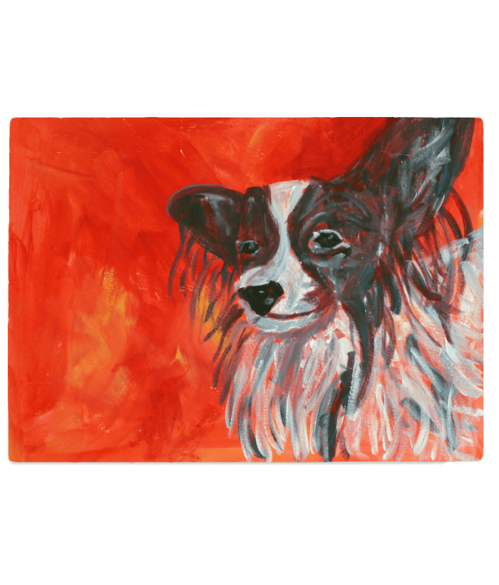 Red tempered glass worktop saver with Papillon dog image