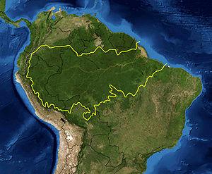 Amazonie en danger (2/6)