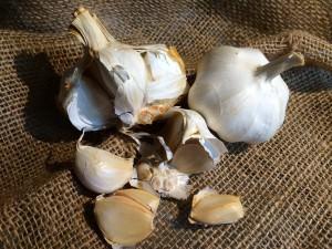 Glorious garlic