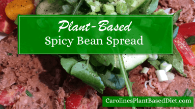 Plant Based Spicy Bean Spread