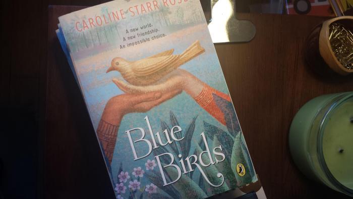 blue birds paperback