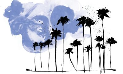Palms Prints – Cape Town
