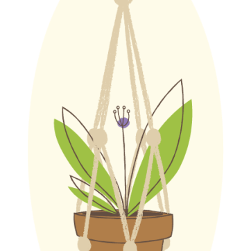 Day 22: Hanging Plant