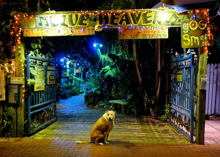 Gate to popular Key West, Florida restaurant Blue Heaven at night