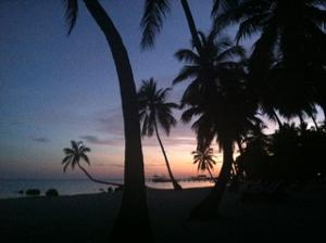 Purple sunset with palm trees at Mooring Village beach Photo©2020SarahNottage
