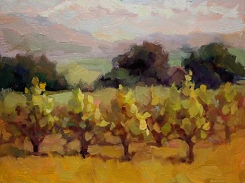 stringbeans-vineyard