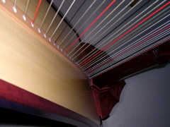photo close up of Carol Robbins' harp