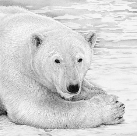 "Polar Prince"" 2002 by David Dancey-Wood"