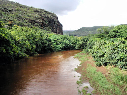 Waimea River as seen from the Swinging Bridge. Photo from gohawaii,about.com.
