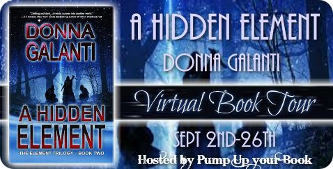 """Last Lines: In Books, In Life"" - Guest Post by Donna Galanti, author of A Hidden Element"