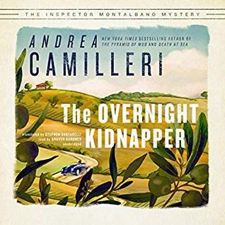 The Overnight Kidnapper Cover