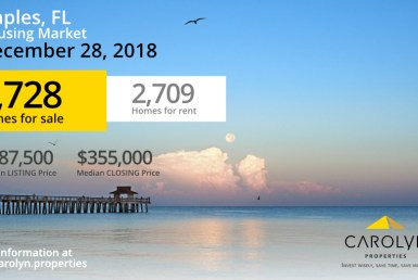 Carolyn Properties Naples Market Report December 2018