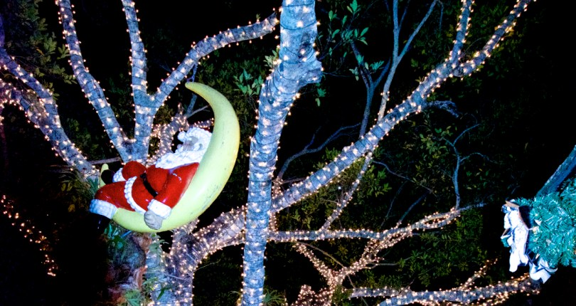 2019 Holiday happenings in Naples, Florida
