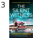 The Silent Witness by Carolyn Arnold, a red cottage on a lake under a teal sky.