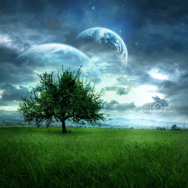 After The Harvest—Learning To Leave The Planet Gracefully, By Robert Jensen