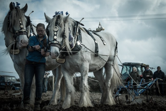 bryony-gill-ploughing-0426