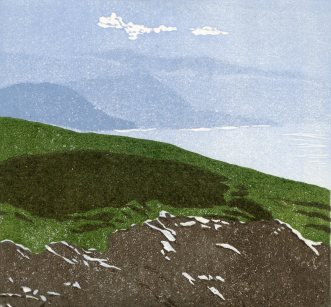 Image of 'View from the Top', an originallinocut by artist Carolyn Murphy