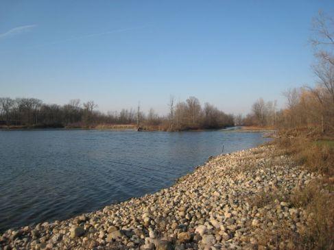 lake near my sister's house