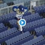 ドアラがマジメに「おしごと」、無人の客席での球拾いが話題【動画】