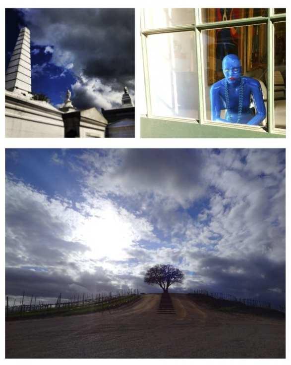 capture the colour contest blue