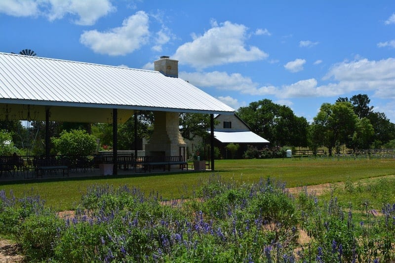 Must See Texas Hill Country Wineries