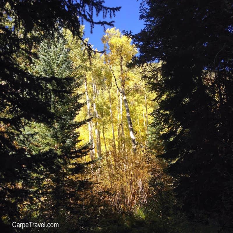 Weller Lake, one of the best Family Friendly Aspen Hiking Trails