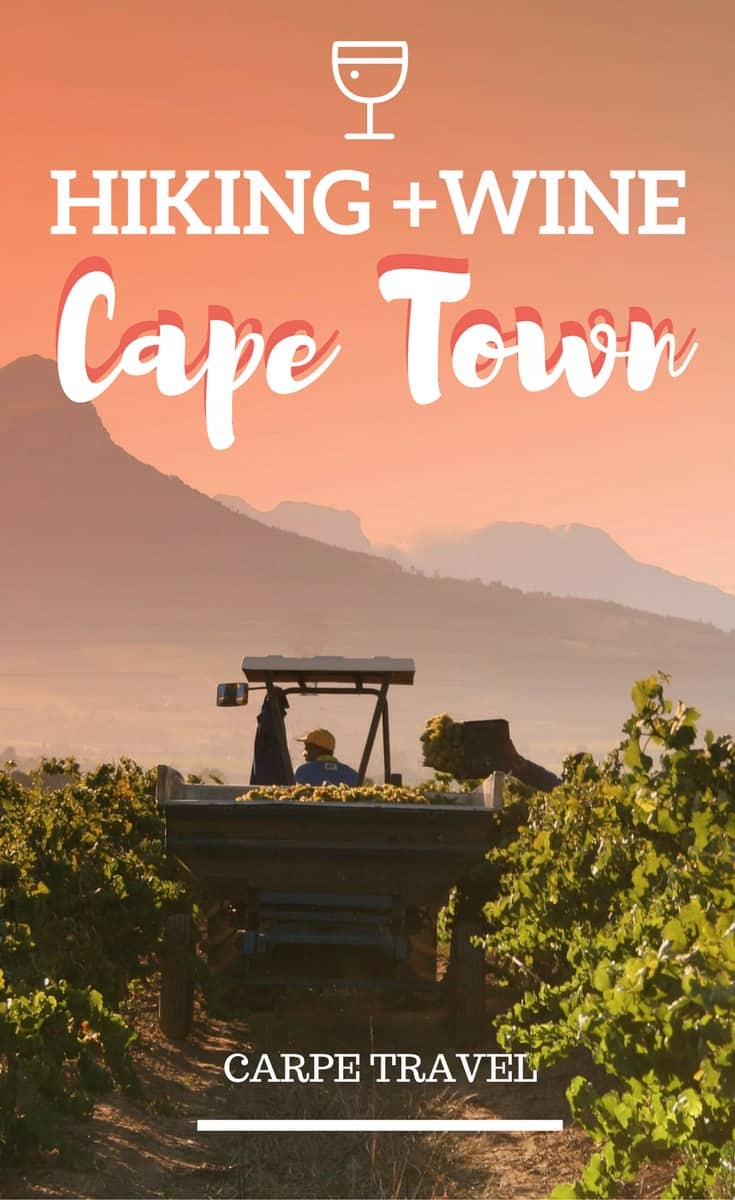 Your Guide to Hiking and Wine in Cape Town