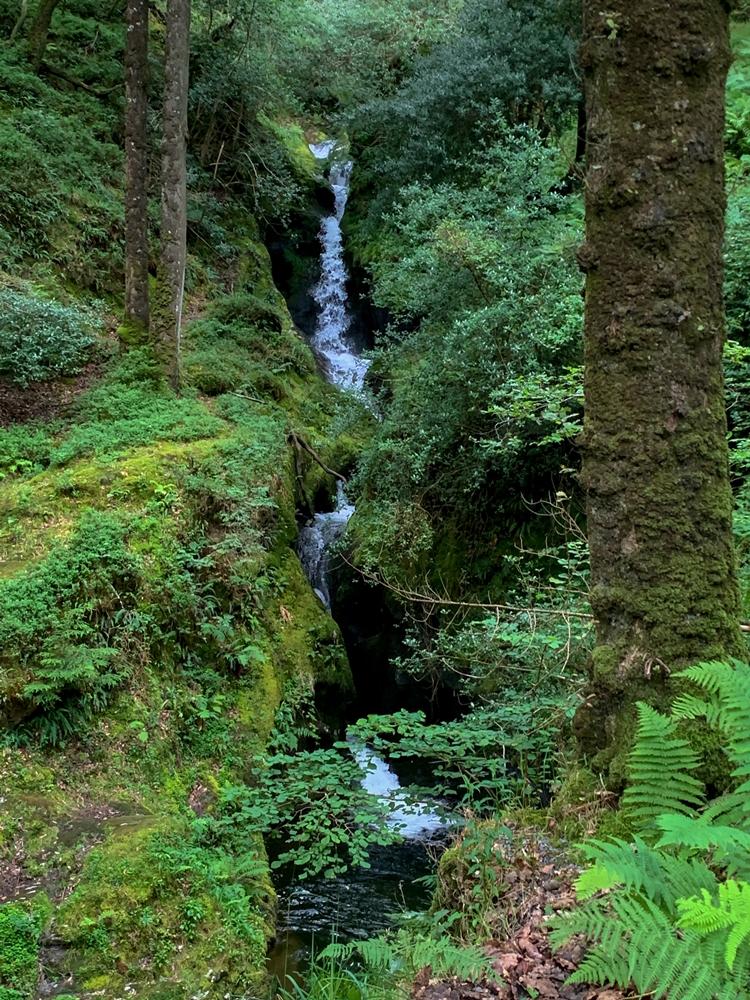 Poulanass Waterfall Wicklow