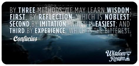Reflection, Imitation, Experience