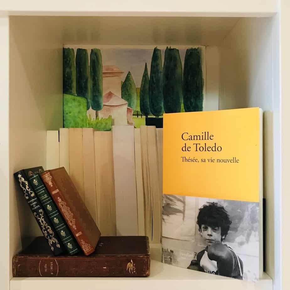 Thésée, sa vie nouvelle, Camille de Toledo