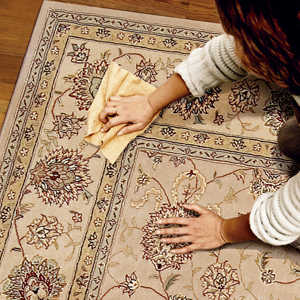Quick cleaning tips for busy moms: Treating Coffee, soda, Chocolate, Candle wax, gum and Pet urine stains on carpets and rugs