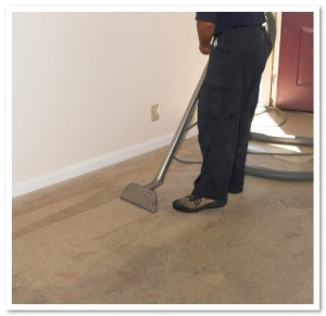 Carpet Cleaners Denver Co