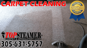 Carpet Cleaner Brickell