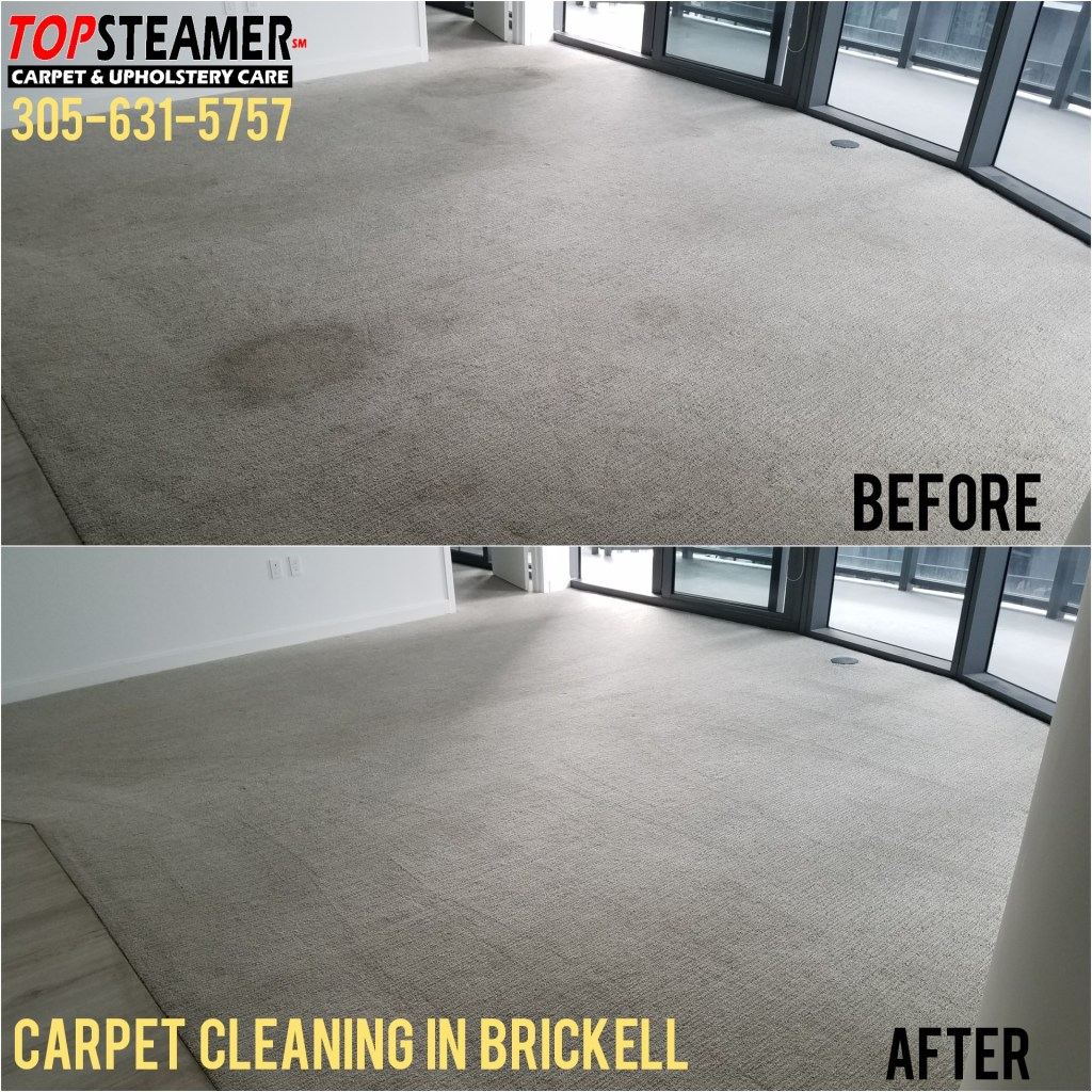 Carpet Steamer in Brickell