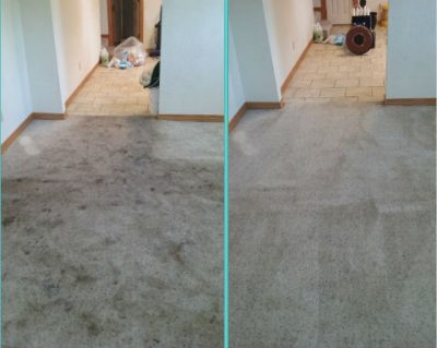 Apartment carpet cleaning results, Joplin MO