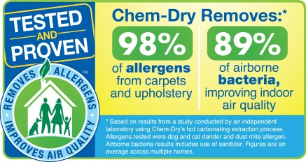 Upholstery Cleaning Allergen Removal