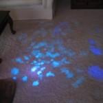 Urine Seen Under UV Light